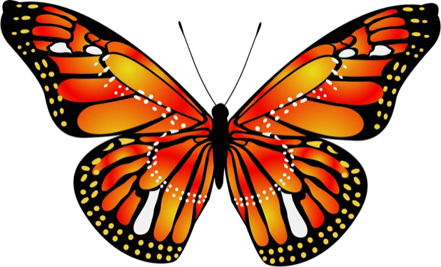 Beautiful Butterfly Sticker Pack messages sticker-8