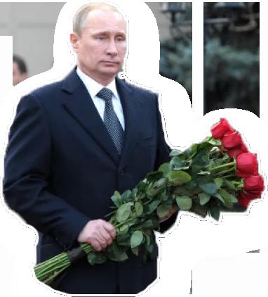 Putin Stickers messages sticker-6