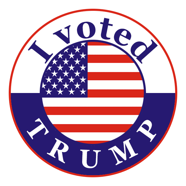 I Voted Stickers messages sticker-4