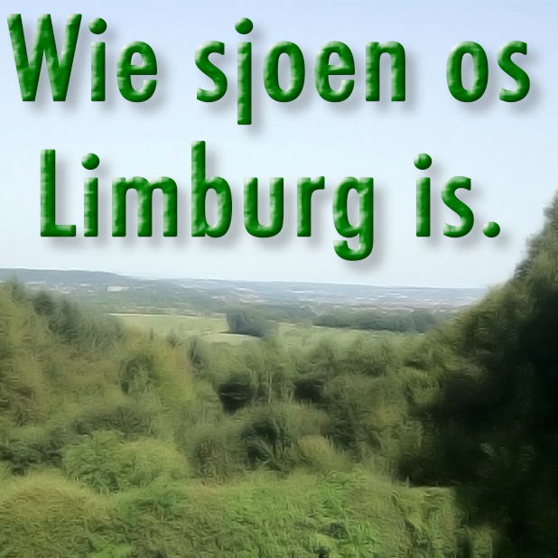 Limburg Stickers (woorden en spreuken) messages sticker-8