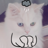 My Dumb Cats messages sticker-8