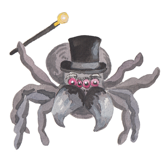Silly Spiders by Rhea Dennis messages sticker-3