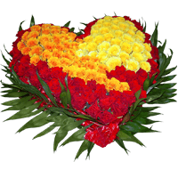 Flowers Stickers Pack FOr iMessage messages sticker-8
