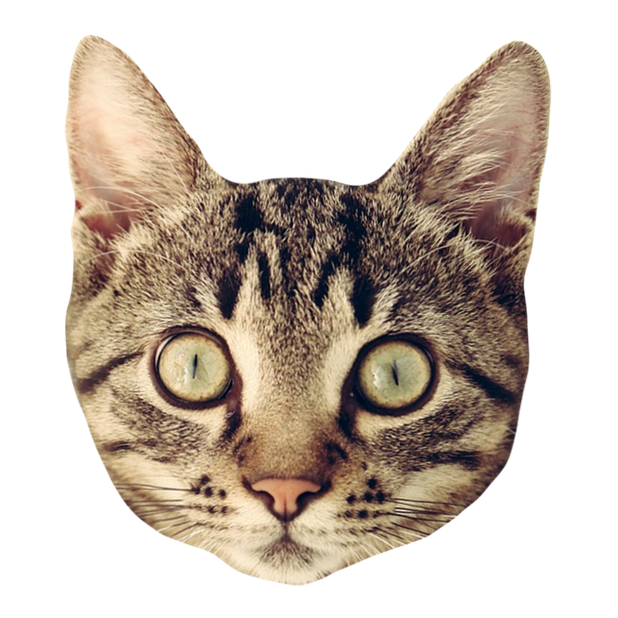 Cat Stickers for iMessage : Cats & Cat Heads messages sticker-6