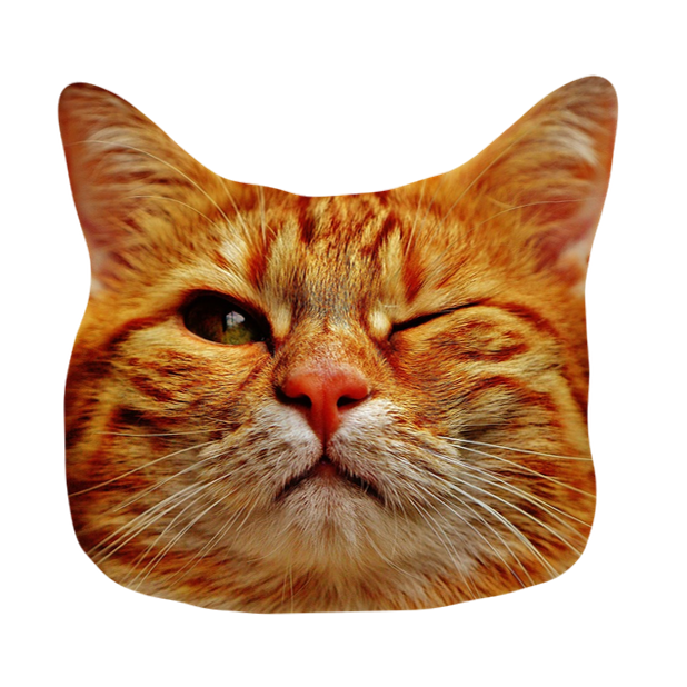 Cat Stickers for iMessage : Cats & Cat Heads messages sticker-0