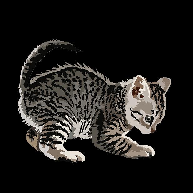 Cute Kittens - Cat Art, Stickers messages sticker-2
