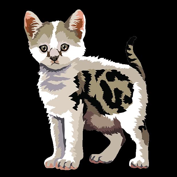 Cute Kittens - Cat Art, Stickers messages sticker-6