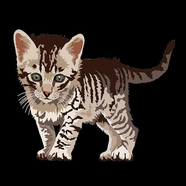 Cute Kittens - Cat Art, Stickers messages sticker-5