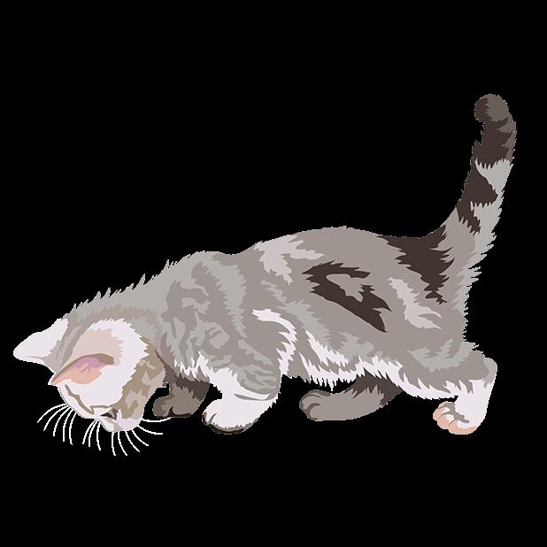 Cute Kittens - Cat Art, Stickers messages sticker-3