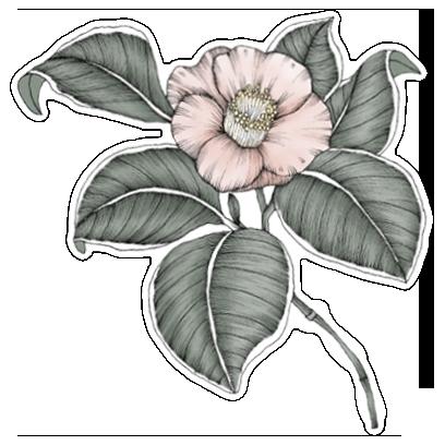 FlowerStickers messages sticker-8