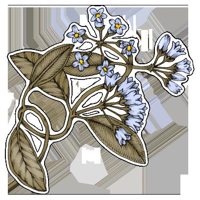 FlowerStickers messages sticker-7