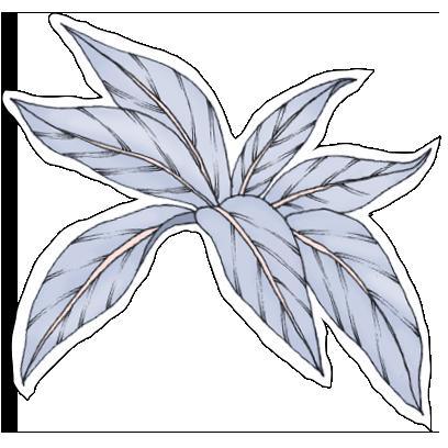 FlowerStickers messages sticker-5