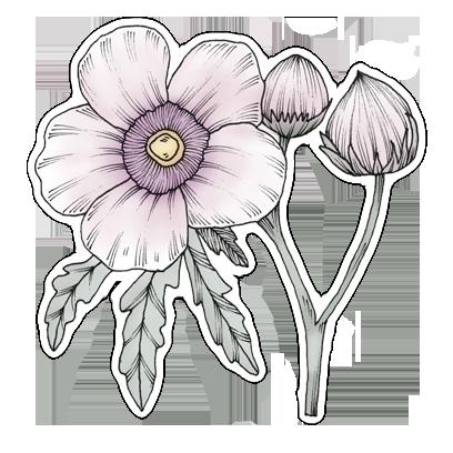 FlowerStickers messages sticker-10