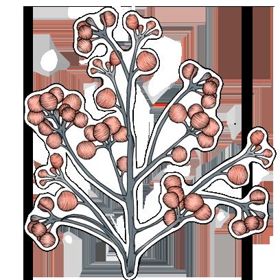 FlowerStickers messages sticker-11