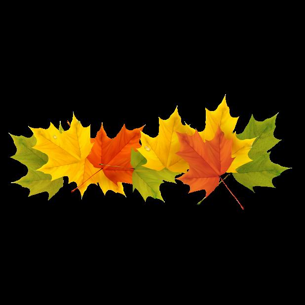 Autumn & Halloween Stickers messages sticker-11