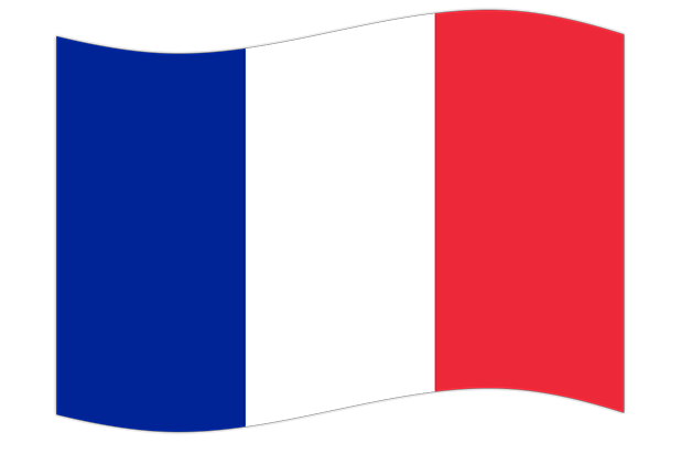 Drapeaux de France Stickers messages sticker-0