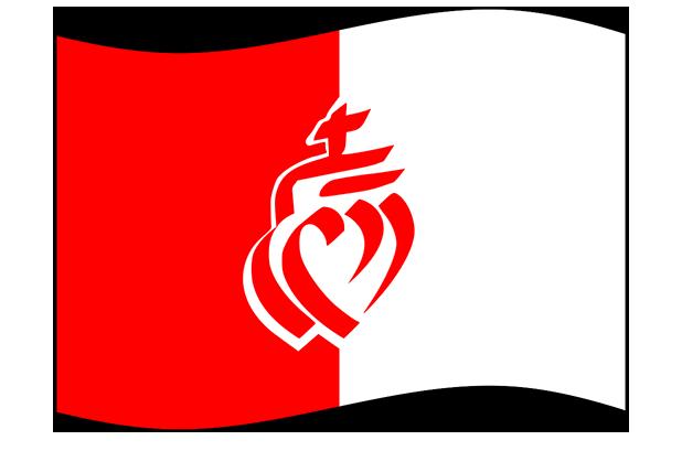 Drapeaux de France Stickers messages sticker-1