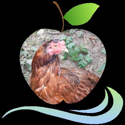 Applecreek's Farm messages sticker-7