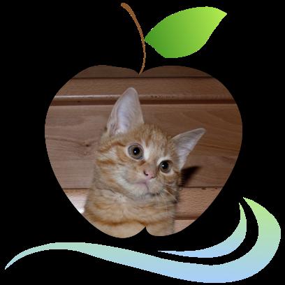 Applecreek's Farm messages sticker-2