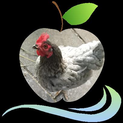 Applecreek's Farm messages sticker-8