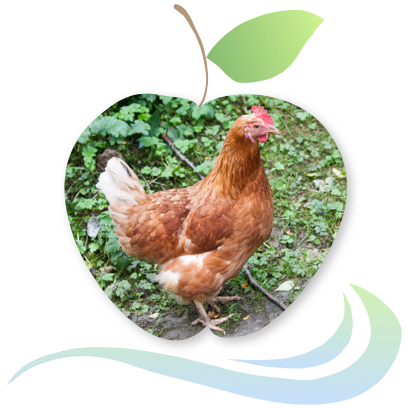Applecreek's Farm messages sticker-6