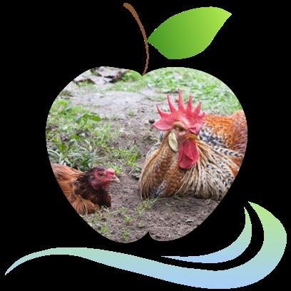 Applecreek's Farm messages sticker-11