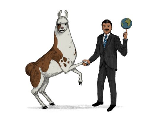 Llama Diplomat - Animated llama stickers messages sticker-8