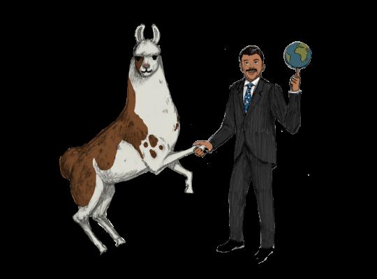 Llama Diplomat - Animated llama stickers messages sticker-8