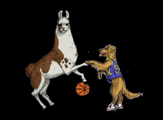 Llama Diplomat - Animated llama stickers messages sticker-0