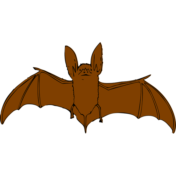 Bats Stickers messages sticker-6