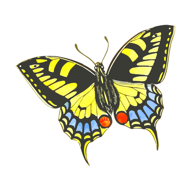 Butterflies Variety Pack messages sticker-6