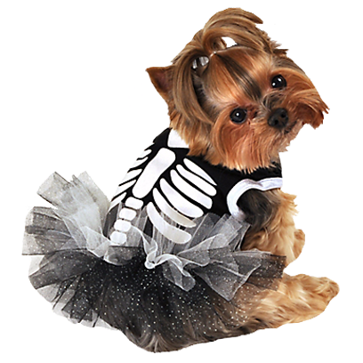 Halloween Dogs messages sticker-0