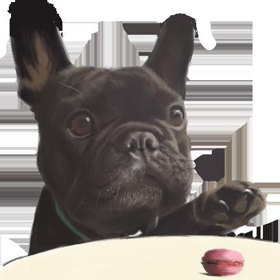 Dogue free pack messages sticker-4