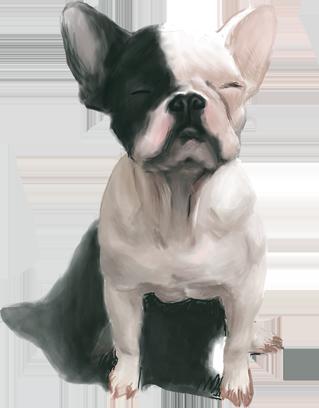 Dogue free pack messages sticker-2