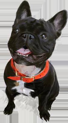 Dogue free pack messages sticker-3