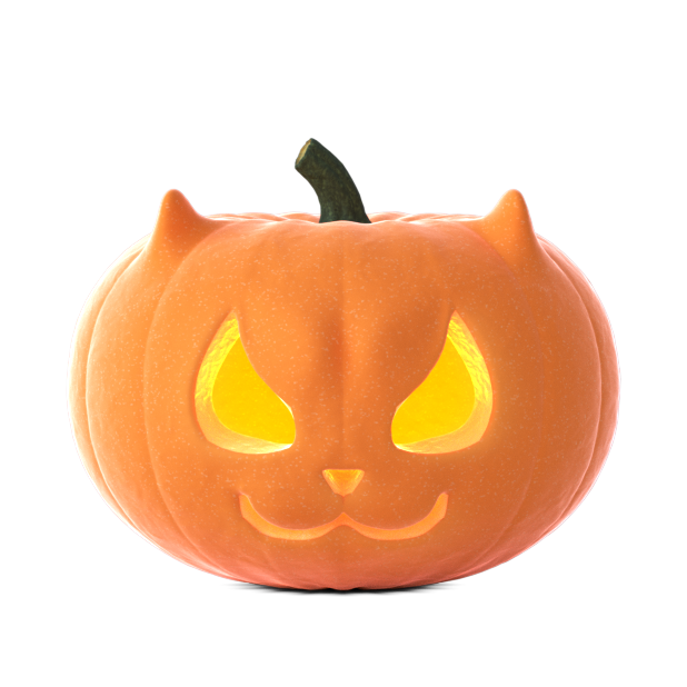 Cat O'Lanterns - Halloween Cat Pumpkins stickers messages sticker-4