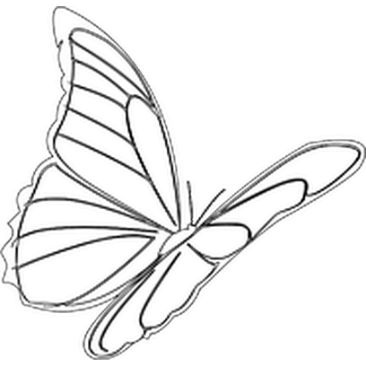 Butterflies Three messages sticker-3