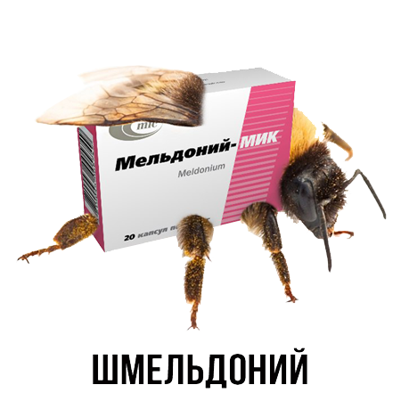 Шлакoблокунь messages sticker-11