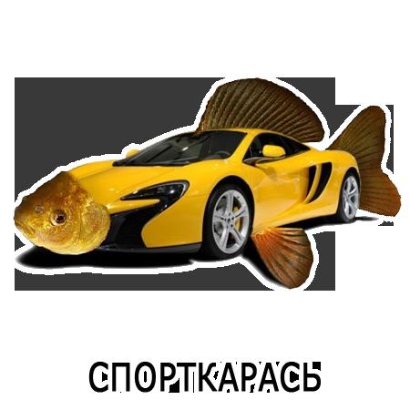 Шлакoблокунь messages sticker-7