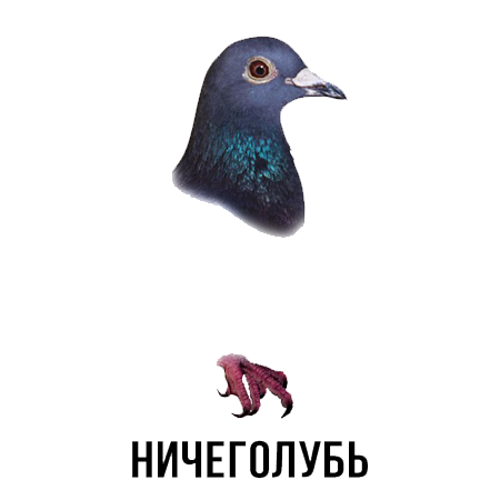 Шлакoблокунь messages sticker-10