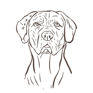 Dogs - A Mans Best Friend messages sticker-3