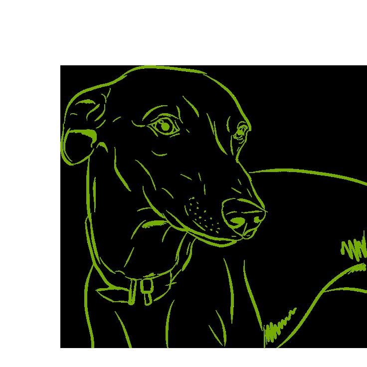 Dogs - A Mans Best Friend messages sticker-0