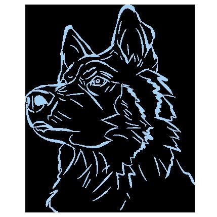 Dogs - A Mans Best Friend messages sticker-2