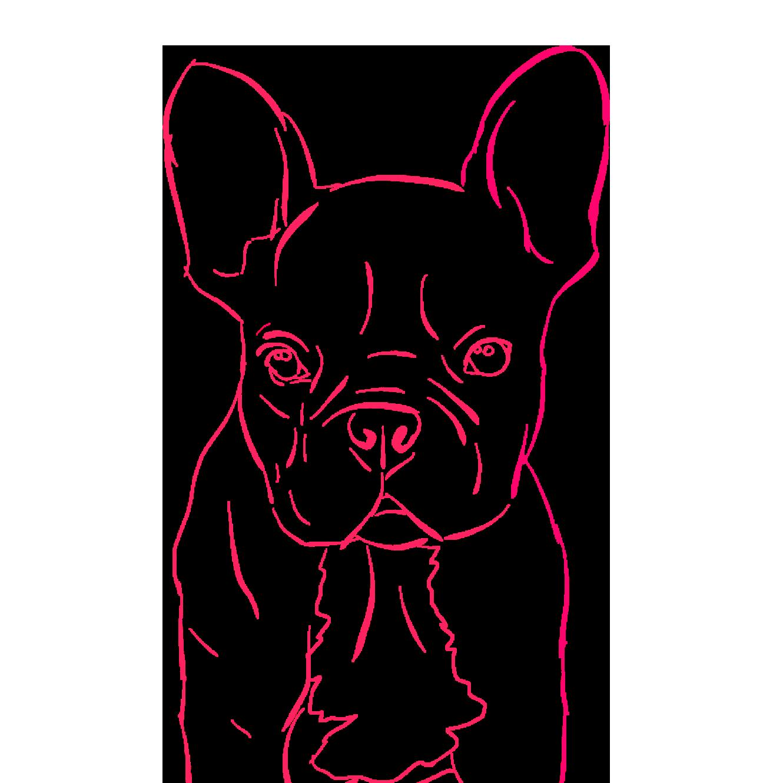 Dogs - A Mans Best Friend messages sticker-5