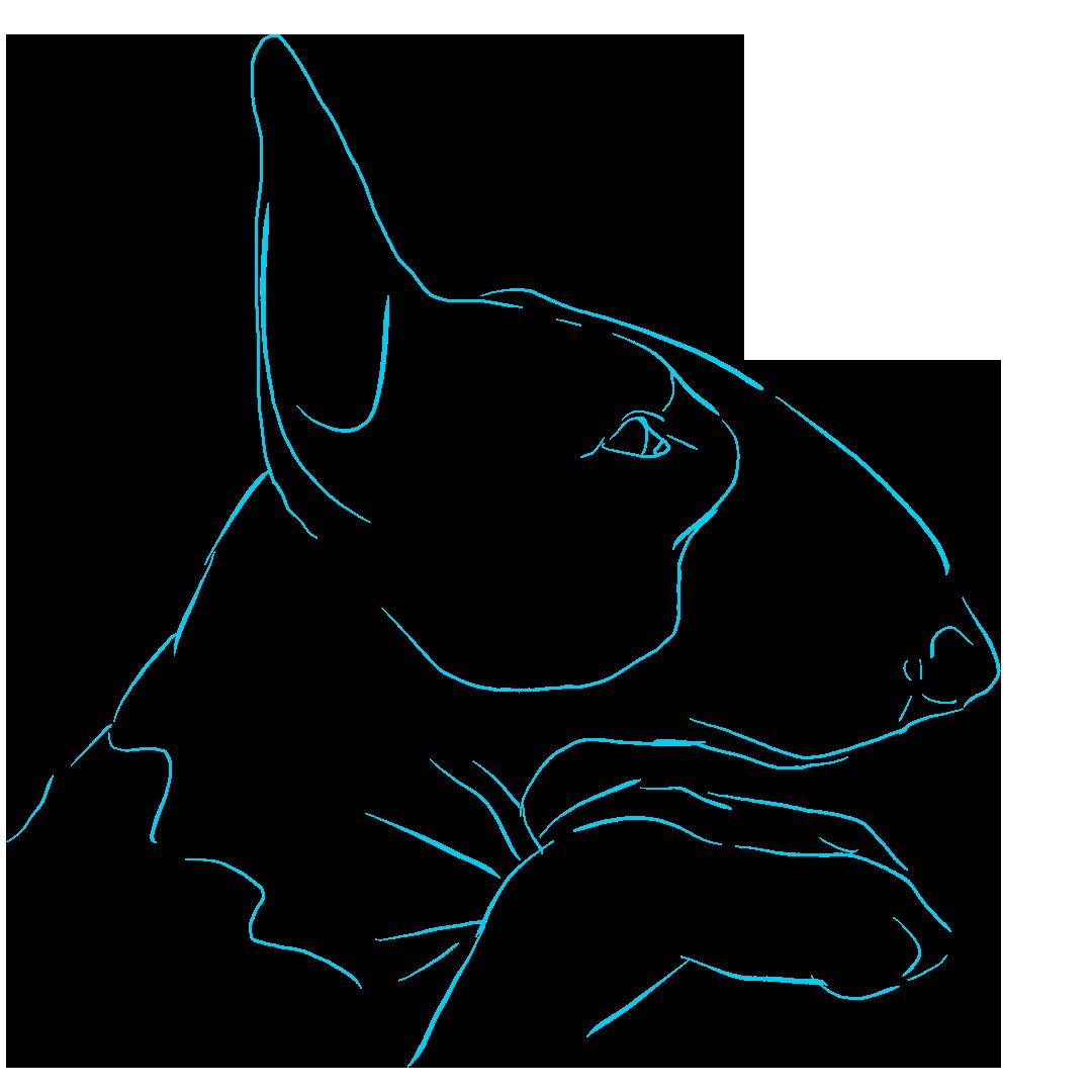 Dogs - A Mans Best Friend messages sticker-10