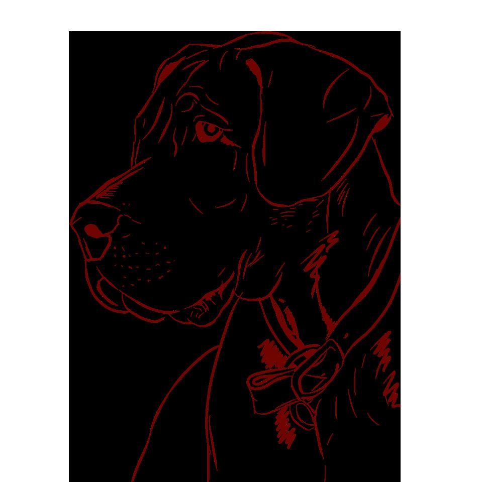 Dogs - A Mans Best Friend messages sticker-6