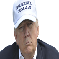 Make Stickers Great Again messages sticker-6