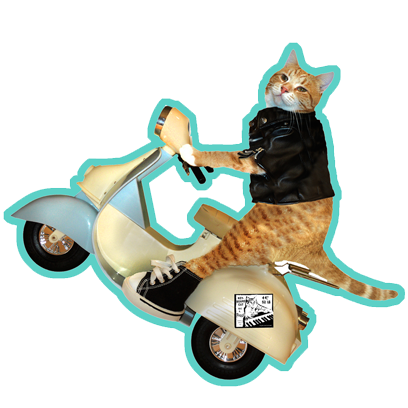 Keyboard Cat Stickers! messages sticker-8