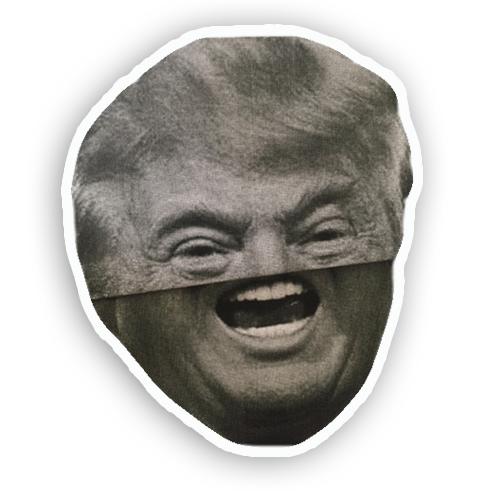 Trump Folds messages sticker-7