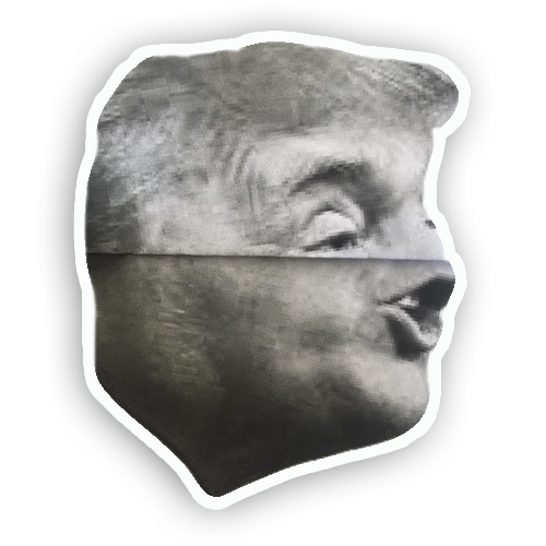 Trump Folds messages sticker-5